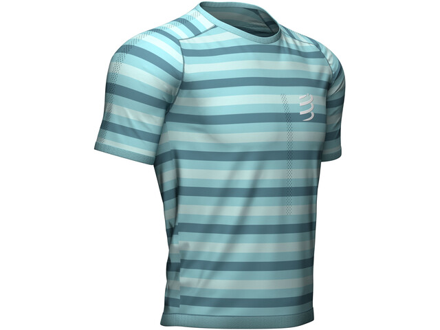 Compressport Performance SS T-Shirt nile blue/stripes